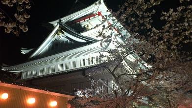 熱海城の夜桜です♪