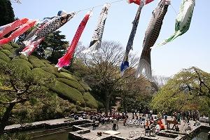 第40回 姫の沢公園花まつり